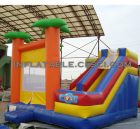 T2-2480 Inflatable Bouncers