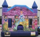 T2-3013 Inflatable bouncers