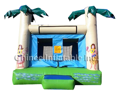 T2-316 inflatable bouncer