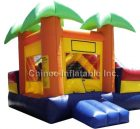 T2-321 inflatable bouncer