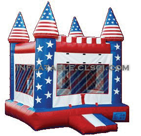 T2-423 inflatable bouncer