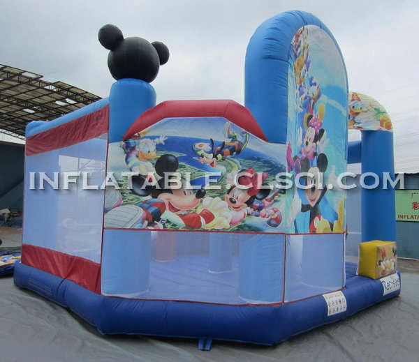 T2-528 Inflatable Jumpers