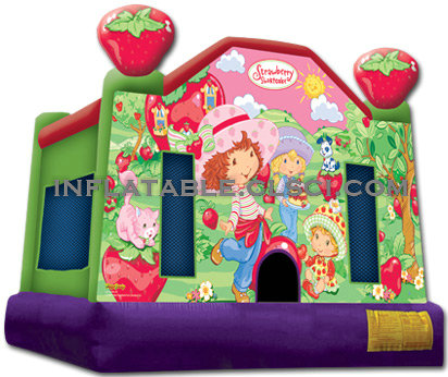 T2-551 inflatable bouncer