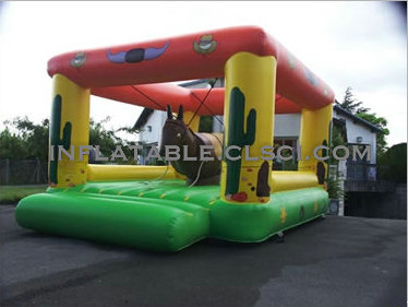 T2-720 inflatable bouncer