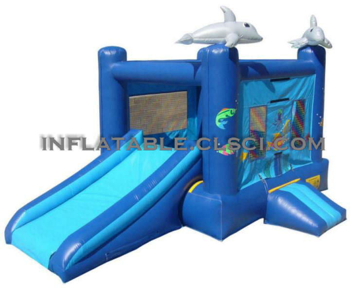 T2-876 inflatable bouncer