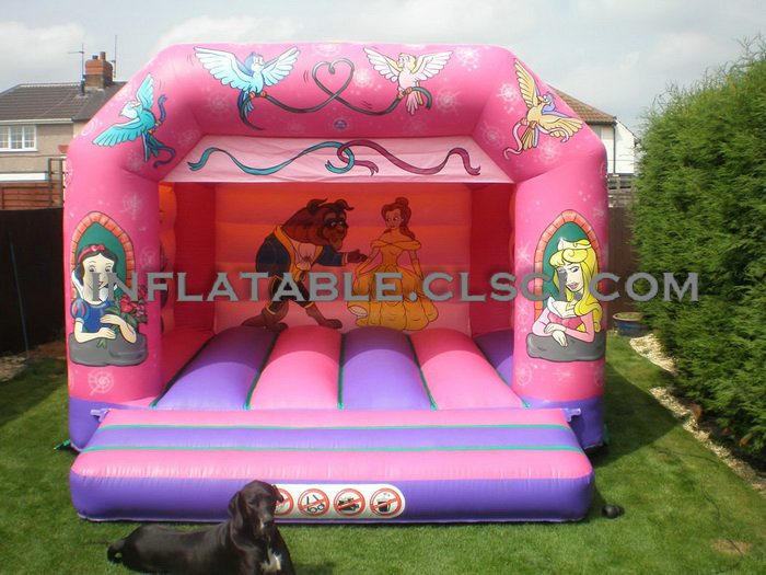 T2-906 inflatable bouncer