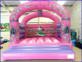 T2-918 inflatable bouncer