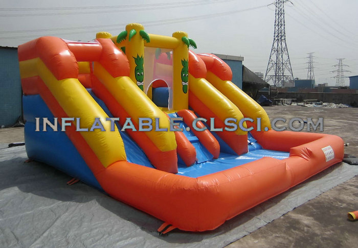 T6-243 Giant inflatables