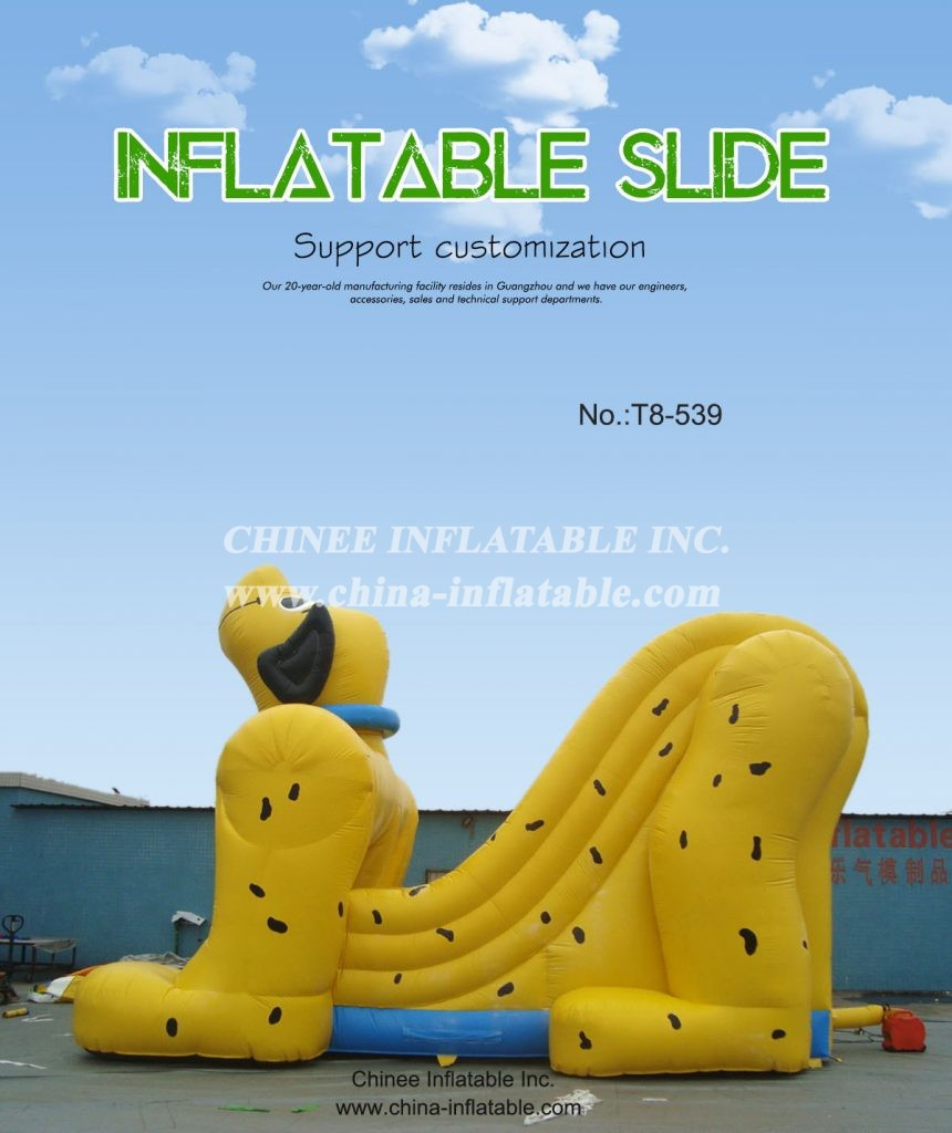 t8-539 - Chinee Inflatable Inc.