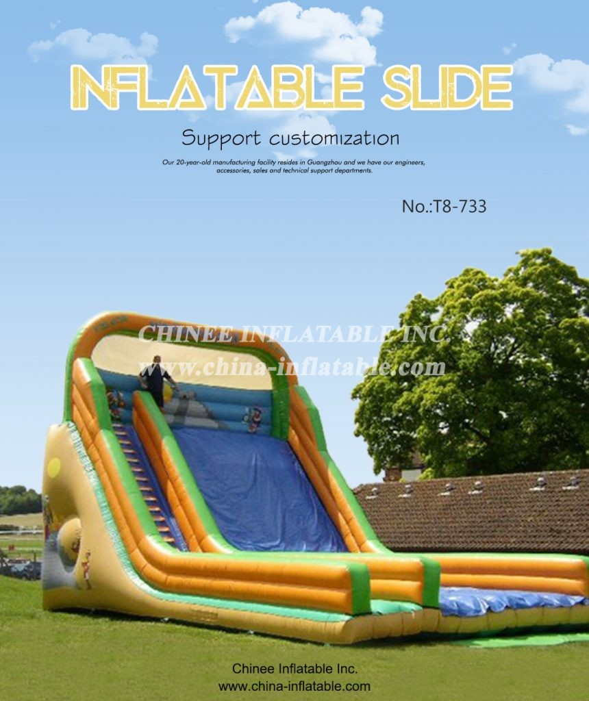 t8-733 - Chinee Inflatable Inc.