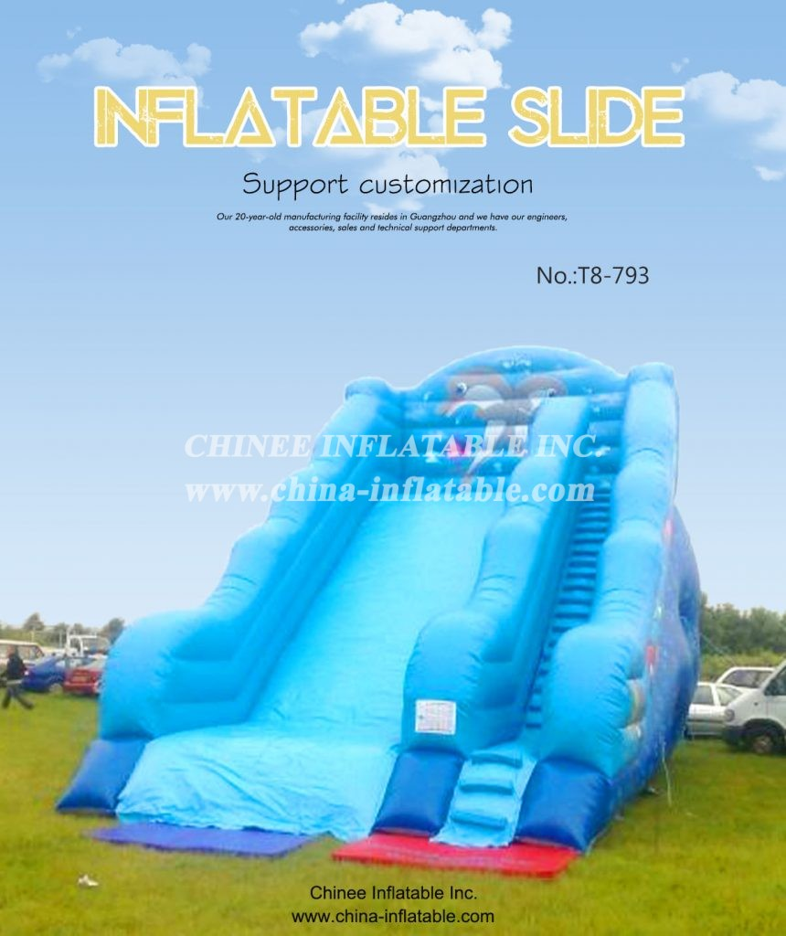t8-793 - Chinee Inflatable Inc.