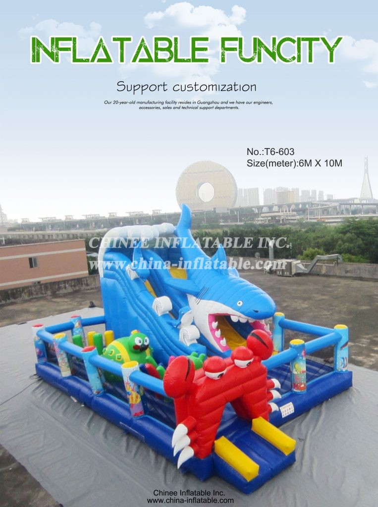 T6-603 - Chinee Inflatable Inc.
