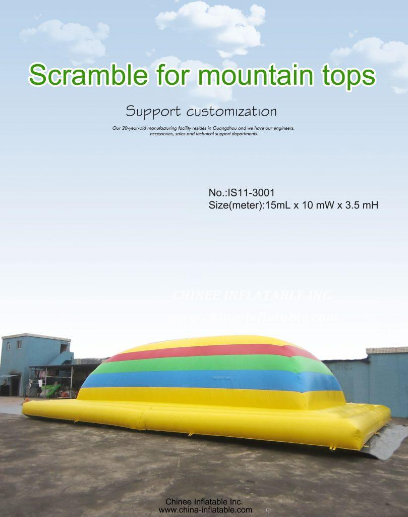 IS11-3001 - Chinee Inflatable Inc.