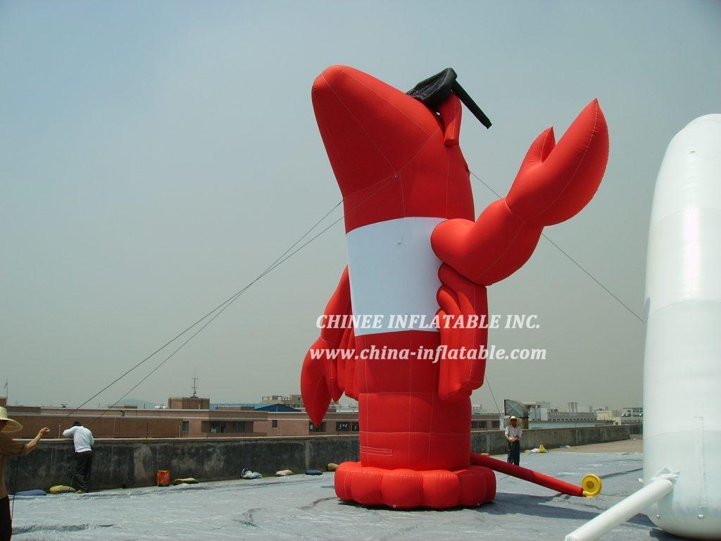 cartoon2-010 Inflatable Cartoons