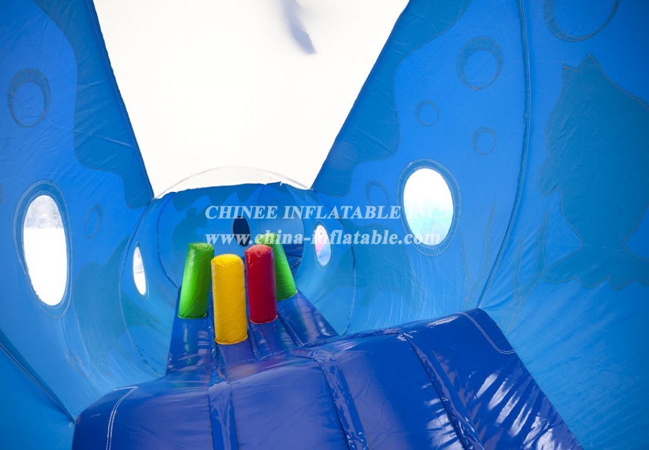 TUNNEL2-003 Tunnel dauphin