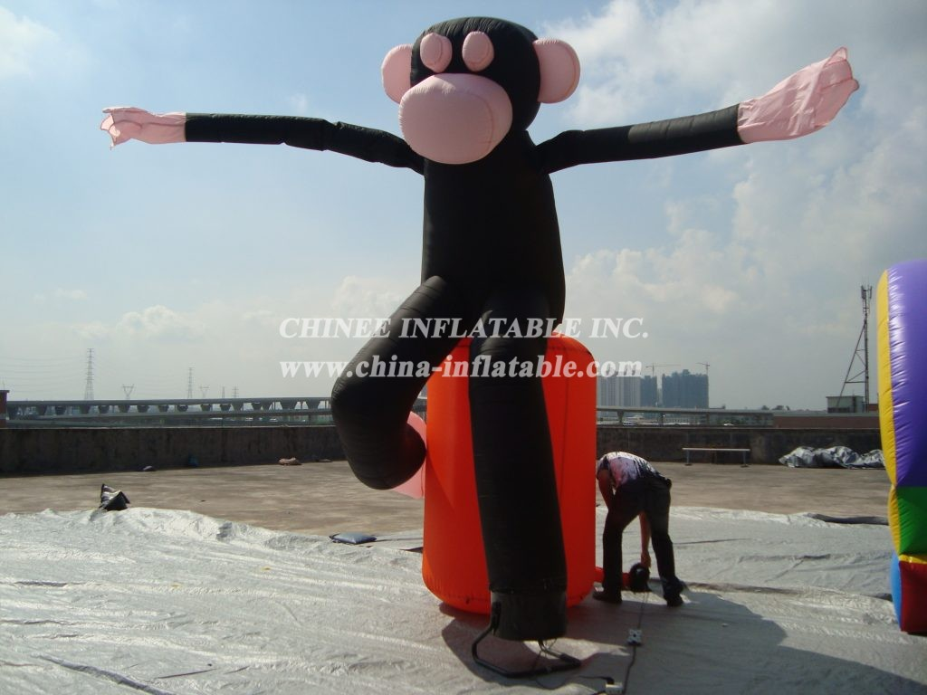 D2-110 Air Dancer