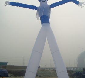 D1-19 Air Dancer